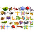 set of insect character vector image
