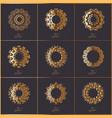 set of oriental mandala vector image vector image