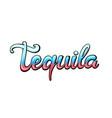tequila handwritten lettering vector image vector image