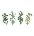 a set green organic branches with leaves hand vector image