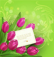 background with tulip vector image