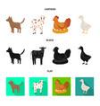 breeding and kitchen symbol vector image