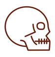 human body skull anatomy organ health line icon vector image vector image