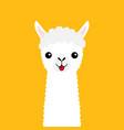 llama alpaca animal face neck cute cartoon funny vector image vector image
