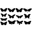 set different butterflies vector image