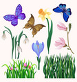 set of bright-colored blooming flowers and vector image