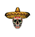 skull in sombrero for dia vector image