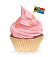 South Africa Cupcake vector image vector image