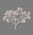 spring card with cherry blossom flower tree vector image vector image