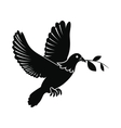 Dove of peace flying with twig olive icon vector image