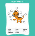 cat vocabulary part of body vector image vector image