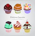 delicious cupcakes collection vector image vector image