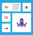 flat icon marine set of seashell algae tentacle vector image vector image