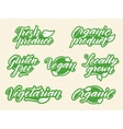 Hand drawn healthy food letterings Retro styled vector image vector image