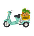 lovely little motorcycle with flowers in a basket vector image vector image