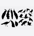 peacock and crow bird animal silhouette vector image vector image