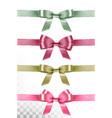 big set colorful gift bows and ribbons vector image