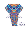 boho elephant pattern floral vector image vector image