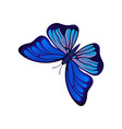 flat icon of bright butterfly flying vector image vector image
