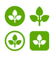 green leaf logo set eco sign vector image vector image