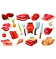 meat and poultry with cutlery vegetables vector image