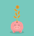 money falling on piggy bank vector image vector image