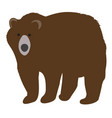 a bear vector image