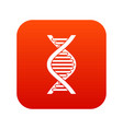 dna strand icon digital red vector image