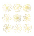 golden floral decoration vector image