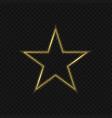 golden star emblem vector image vector image