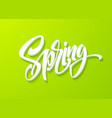 hello spring lettering hand drawn calligraphy vector image