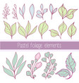 pastel collection flat outline foliage elements vector image