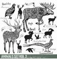 set hand drawn detailed wild animals vector image