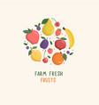 set isolated hand drawn fruits and berries vector image vector image