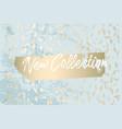 trendy chic banner design vector image vector image