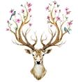 Watercolor hand drawn deer