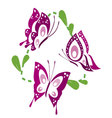 butterfly 3 vector image vector image