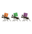 cartoon ants vector image vector image