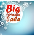 Christmas sale design template EPS10 vector image