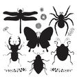 Collection of Black Hand Drawn Insect vector image vector image