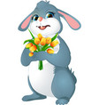 rabbit with yellow tulips vector image vector image