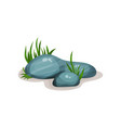smooth rounded rock stones with green grass vector image
