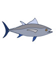 tuna fish sketch vector image
