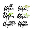 vegan hand written calligraphy lettering with leaf vector image vector image