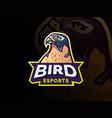 bird mascot character logo design vector image vector image