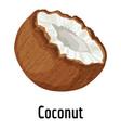 coconut icon cartoon style vector image vector image