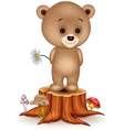 Cute little bear on tree stump vector image vector image