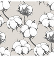 seamless pattern with cotton plants vector image vector image