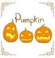 Three Hand Drawn Pumpkin vector image