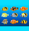 different kinds of fish under the ocean vector image vector image